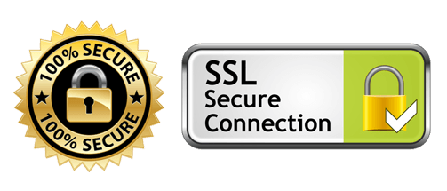 SSL enabled website 100% Secure payment and application submissions